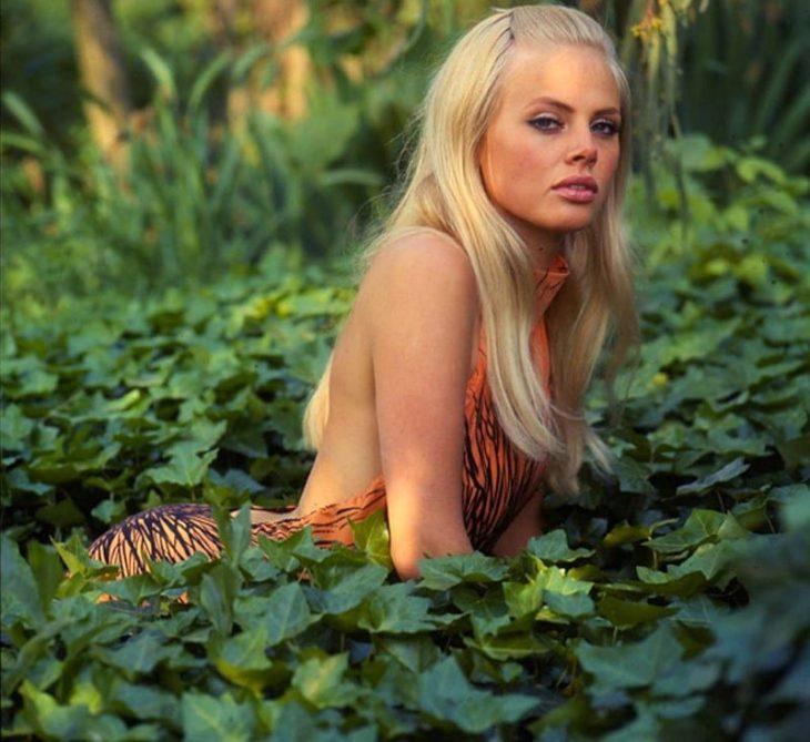 Бритт Экланд: икона красоты Швеции 1960-х годов