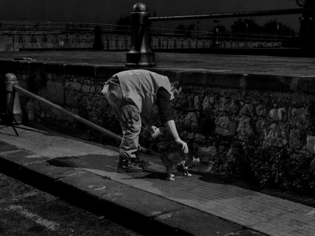 В Сиракузах мужчина раздает еду брошенным бездомным животным, остров Сицилия, Италия, 2020 год.