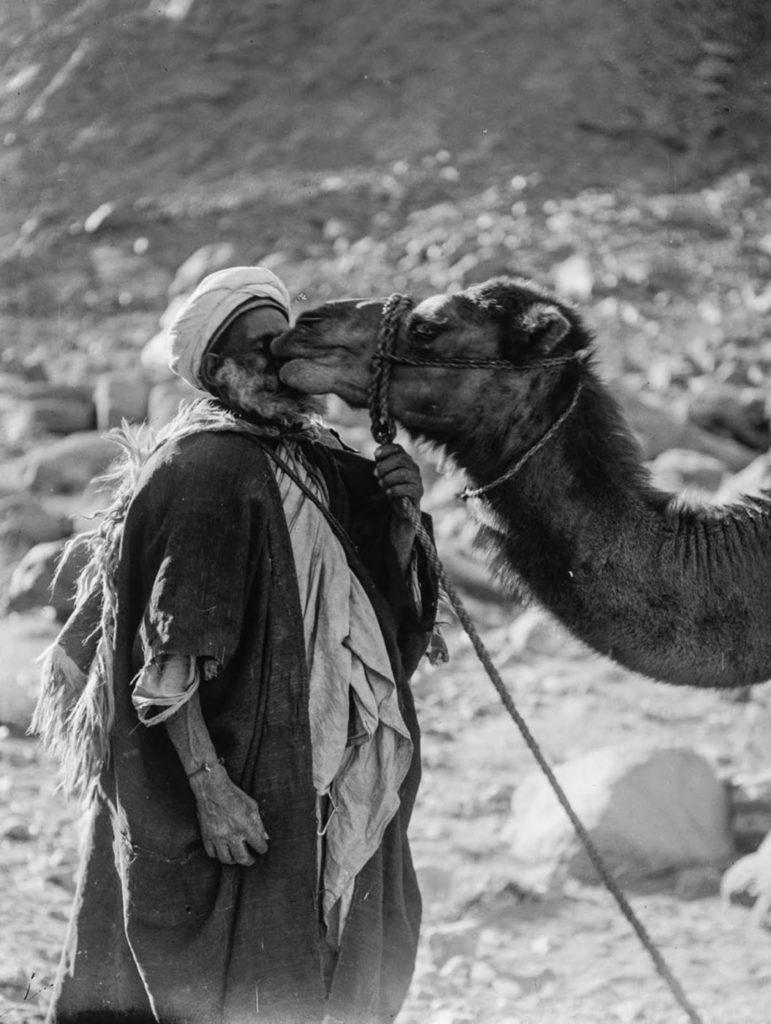 Пожилой мужчина с верблюдом, 1898 год.