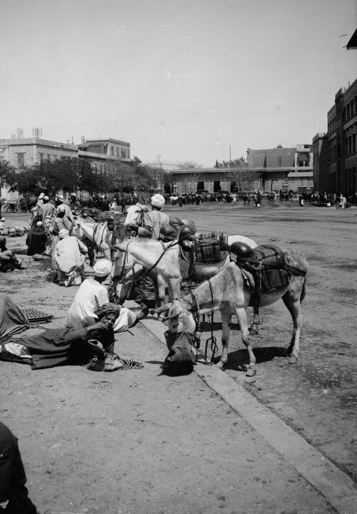 Группа мужчин, с ослами, 1900 год. Источник: Library of Congress
