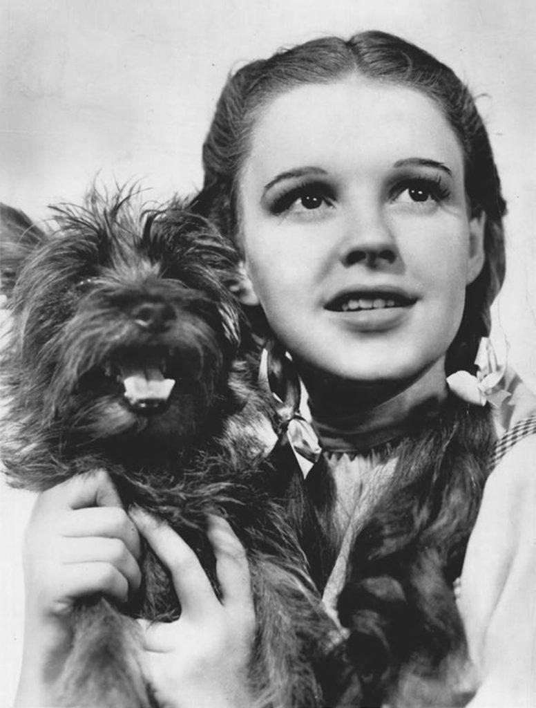 Фотография Джуди Гарленд в роли Дороти Гейл. Источник: Wikimedia Commons.