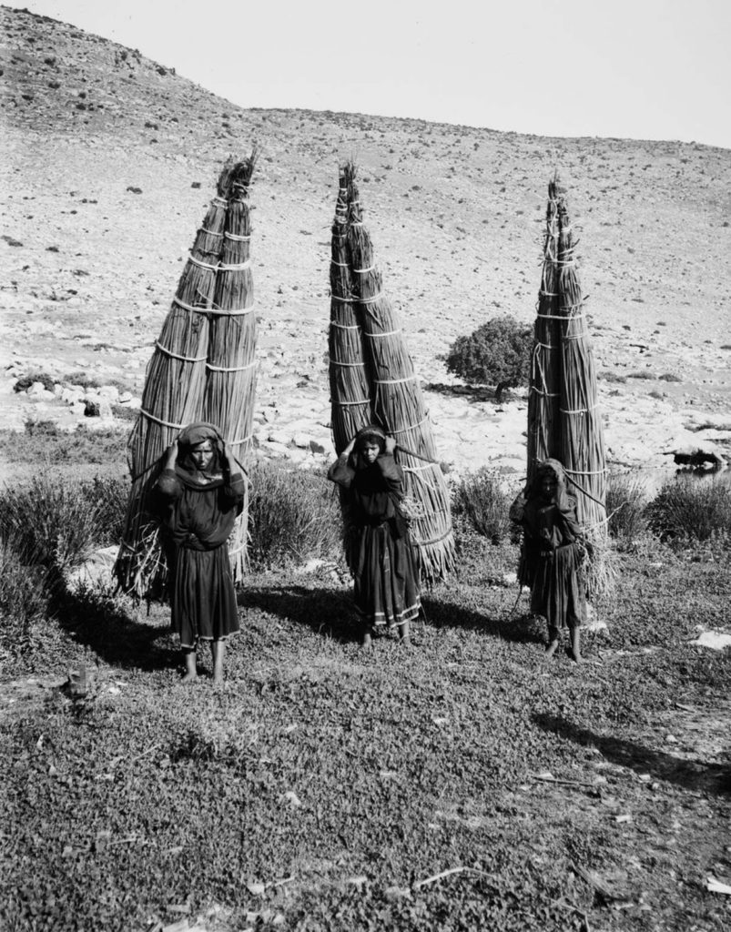 Женщины несут связки папируса, 1898 год.