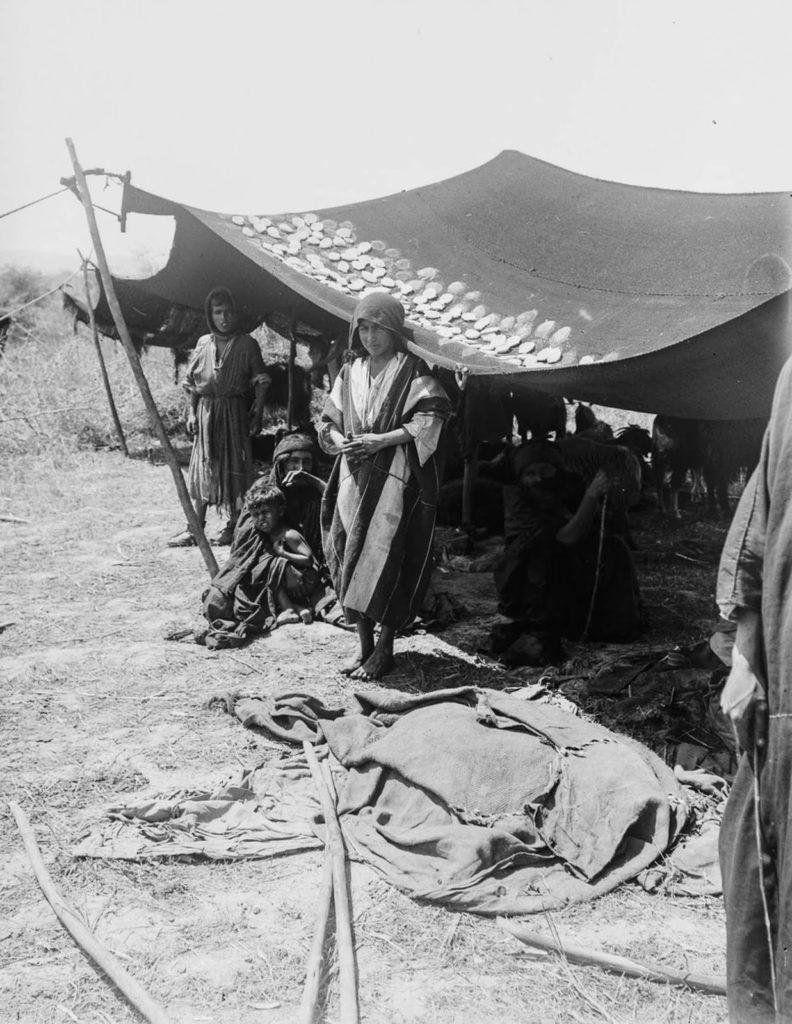 Семья бедуинов сушит сыр разложив его на палатке, 1898 год.