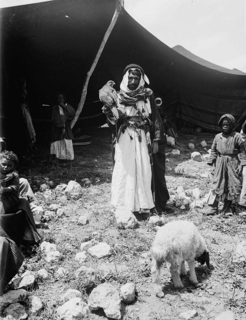 Бедуин с дрессированным соколом на руке, 1898 год.