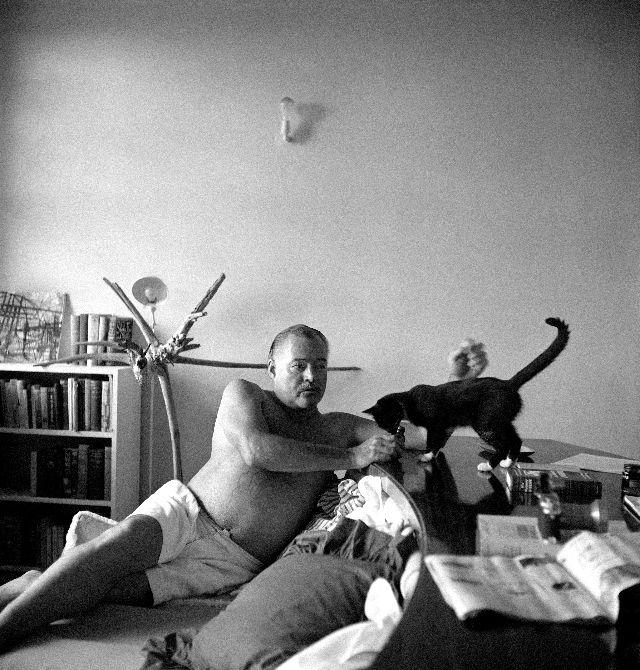 Эрнест со своей черной кошкой дома, Куба, 1950 год.