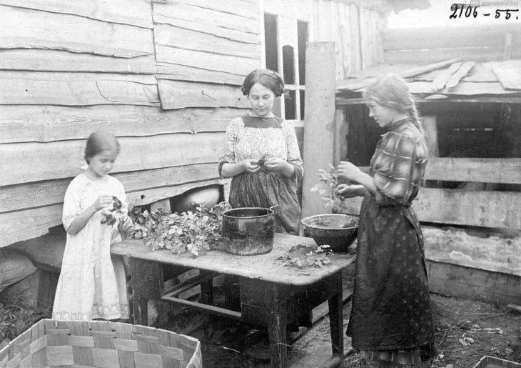 Цветочный промысел, начало XX века.